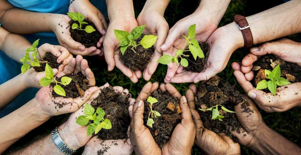 IntegralWorld-Perspective-Publication-Report-Lending-a-Hand-to-Sustainability-featured-image